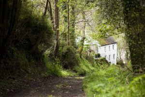 Spring Cottage bed & breakfast accommodation near Truro in Cornwall