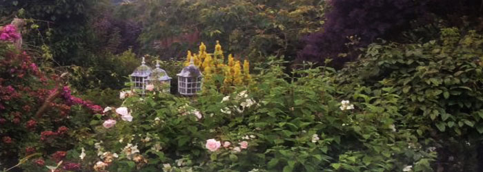Emms Cottage - our gardens